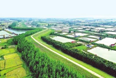荆州市成功创建国家森林城市成果展示