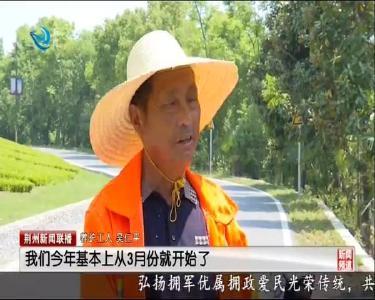 """""""四好农村路"""" 2020年底荆州所有县市区达标"""