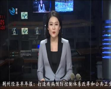 荆州:防长汛抢大险 全力打赢防汛救灾主动仗
