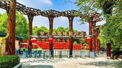 出游更便捷!荆州枢纽站至楚王车马阵景区直达车开通啦