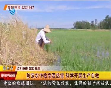 防范农作物高温热害 科学开展生产自救