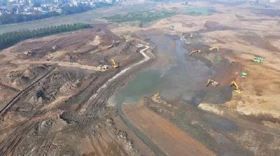 """荆州一地正在打造""""水下森林""""网红打卡地!"""