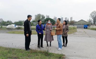 云上沙市区 | 区委书记刘辉萍走访调研民营企业
