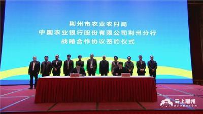 """荆州市政府与农行湖北省分行签订""""十四五""""战略合作协议"""
