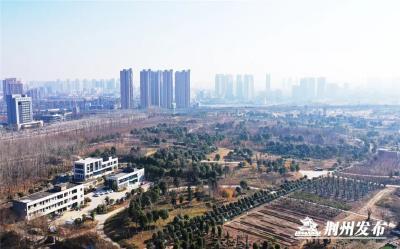 计划一年后完工!临江仙公园二期建设工程启动