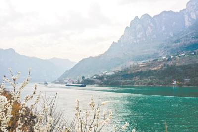我国首部流域法《长江保护法》3月1日起施行 违法侵占长江岸线最高罚500万元