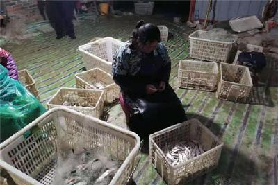 因非法捕捞长湖野生鱼,两村妇被依法拘留