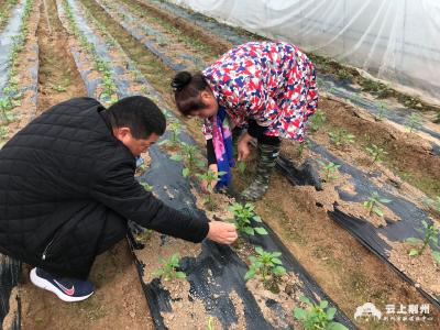 荆州:助力消费扶贫 巩固脱贫攻坚成果
