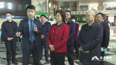 王玲调研荆州市县域经济高质量发展工作