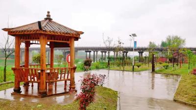 废水沟变公园,荆州区弥市镇这个地方大变样!