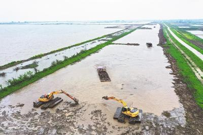 洪湖恢复湖泊湿地9万多亩