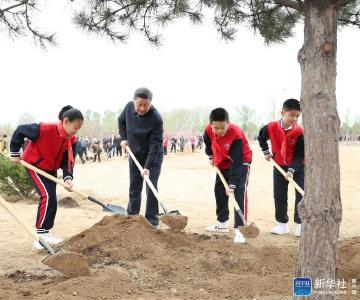 习近平:美丽中国建设离不开每一个人的努力