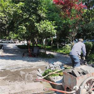 创文进行时   升级改造游园设施 美化城市环境