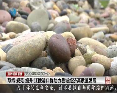 取缔 规范 提升 江陵港口群助力县域经济高质量发展