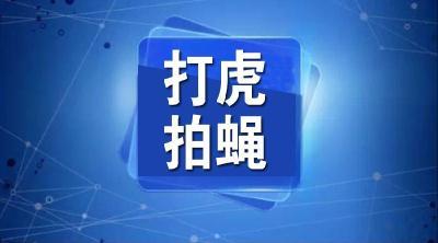 松滋市市场监督管理局原党组成员、副局长王尊文被双开