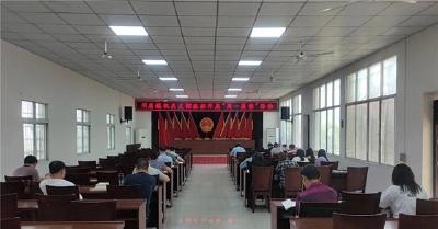 荆州区川店镇多措并举提升党史学习教育成效