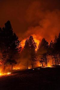 88场大型山火在美国蔓延 近6000平方公里土地被烧毁