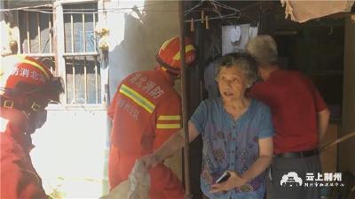 """吓人!1米多长""""菜花蛇""""闯入居民家中 消防队员紧急抓捕"""