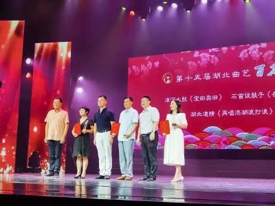 喜!全省最高规格的大赛上,洪湖原创作品获奖!