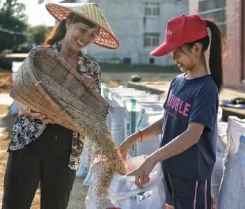 荆州:又是一年丰收季 遍地金黄粮满仓