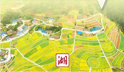 2021年省委一号文件公布 全面推进乡村振兴和建设农业产业强省