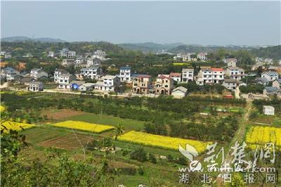 """【荆楚网】""""中国美丽休闲乡村""""全心畈村的蝶变之路"""