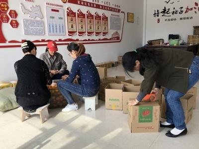 """渔洋溪电商村进入""""农忙期"""""""