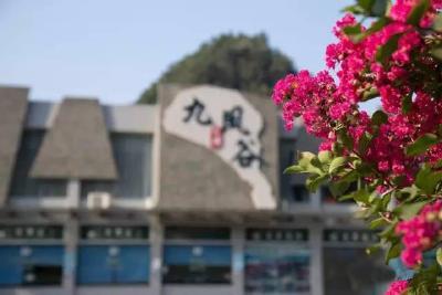 弭水桥村:紫薇花枝上重生的村庄