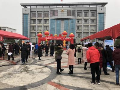 """红花套镇举行2019年""""春风行动 就业在红花""""大型招聘会"""