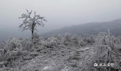 云台观惊现冰凌奇观!美得不要不要的!