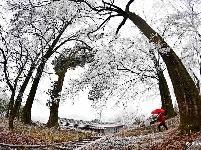 潘家湾:童话般的冰雪世界