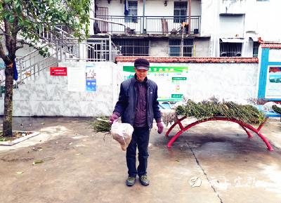 庙河村:合作社为贫困户增收铺路