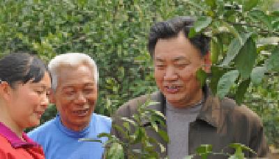 龙窝村:农业技术培训 助力精准扶贫