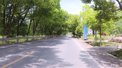 【项目进行时】路景交融 宜都这条道路即将大变样