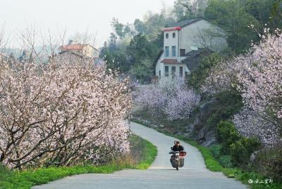【项目进行时】农村公路铺就农民幸福路
