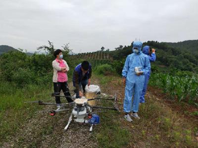 宜都松材线虫病防治取得阶段性成效