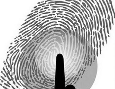 """梦中""""自动解锁"""",指纹支付被盗刷?真相是……"""
