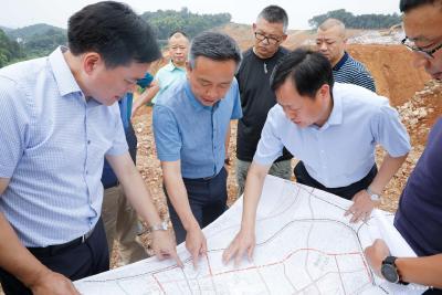 罗联峰谭建国督查化工园区及重点项目建设