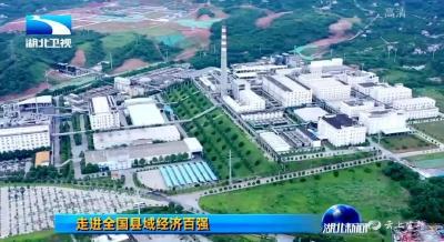 """《湖北新闻》聚焦宜都""""工业技改""""促进经济高质量发展"""
