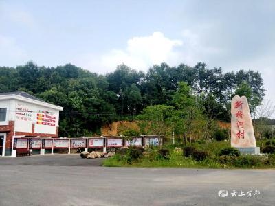 新桥河村:建强组织阵地 弘扬红色文化 促进基层党建全面提升