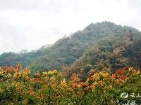 十月,层林尽染秋色美!