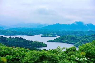 白鸭垴村:生态美引八方客
