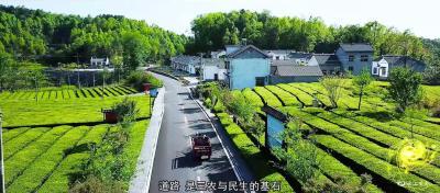 """【提案追踪】市交运局:补齐农村公路""""短板"""" 提升道路通行能力和服务水平"""