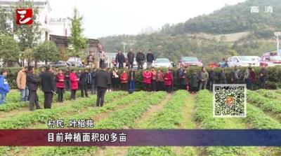 【三峡广电】培育职业农民 助力乡村振兴
