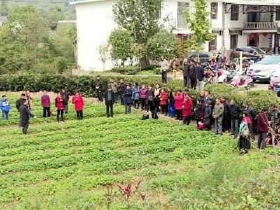 【不忘初心 牢记使命】市农业农村局:培育职业农民 助力产业发展