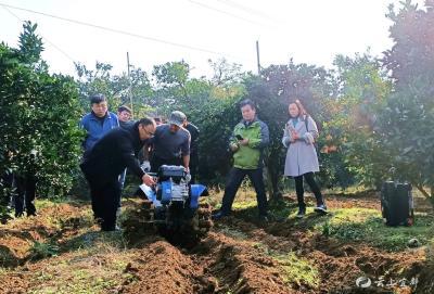 全省果菜茶有机肥替代化肥试点培训会推广我市经验