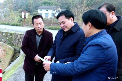 罗联峰在枝城镇调研时强调 乡村振兴要走农旅融合之路