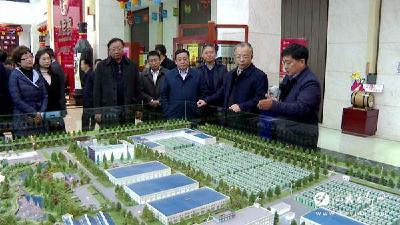 云阳县党政代表团来我市考察生态农业发展