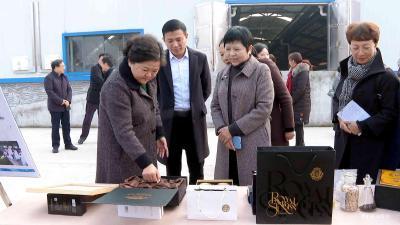市人大常委会组织省、宜昌市人大代表开展集中视察