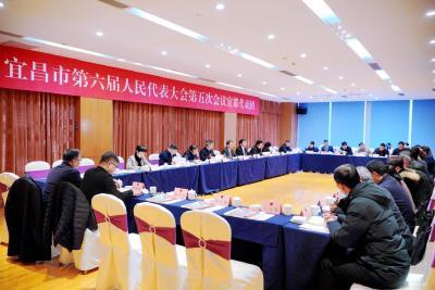宜都代表团围绕宜昌政府工作报告展开审议